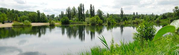 Blick auf den See